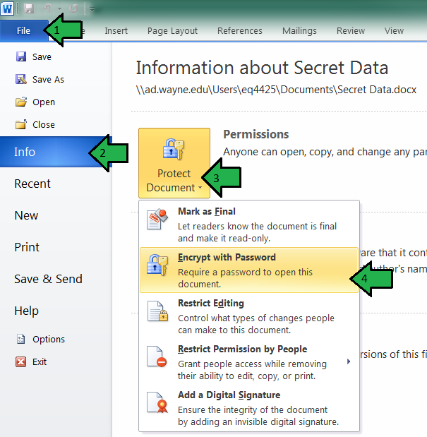 How do I encrypt common Microsoft Office documents? - Articles